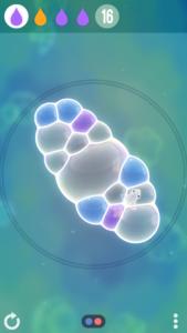 タイニーバブルスバチルス菌