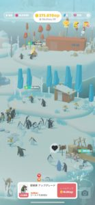 ペンギンの島 花畑