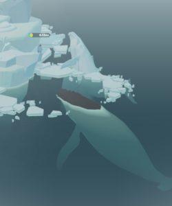 クジラの巣